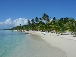 Saona Island, Santo Domingo Excursions