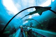 National Aquarium, Santo Domingo
