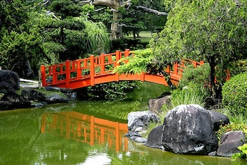 Recommended! Tour the Santo Domingo Botanical Gardens